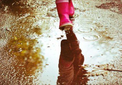 Schritt für Schritt ind die Erziehungsfreiheit