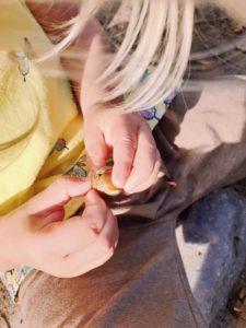 Ohne Kindergarten Natur erkunden