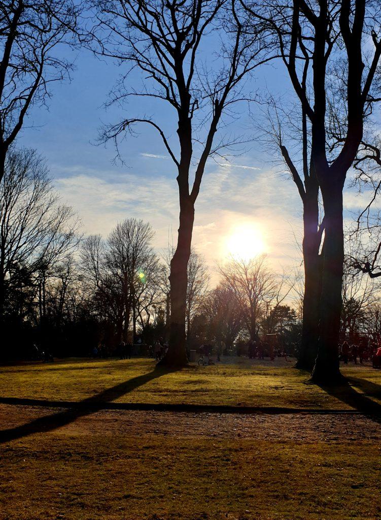Wochenende in Bildern 23./24.2 Samstag Sonne genießen