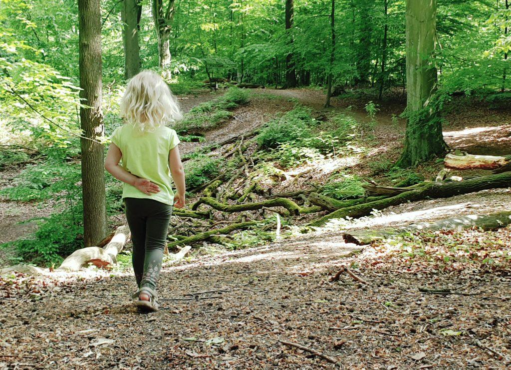 SAMSTAG Im Wald