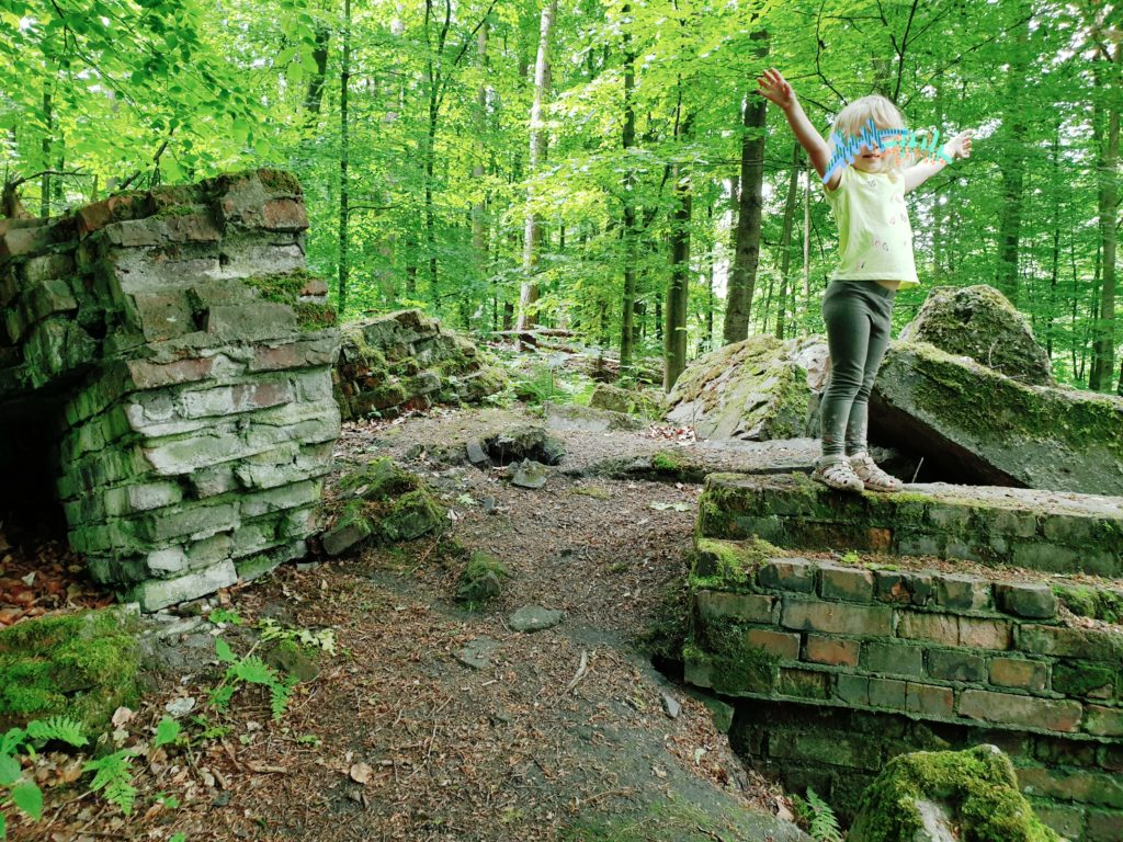 SAMSTAG Ruine im Wald