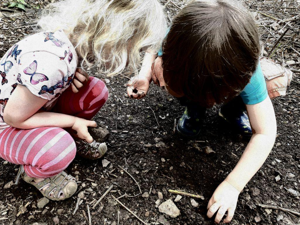 Im Garten Natur erforschen