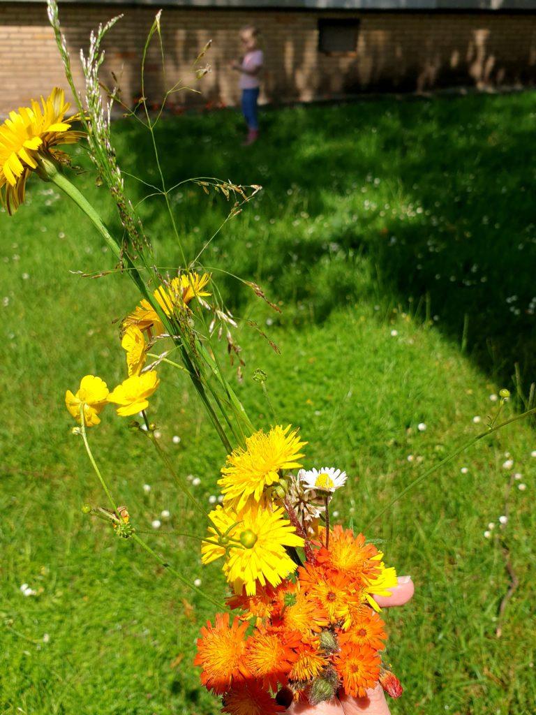 Blumenstrauß pflücken