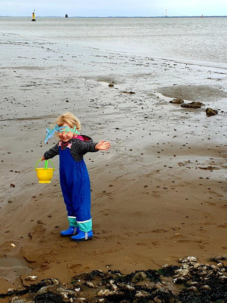 Wattliebe Die Weiten des (verschwundenen) Meeres